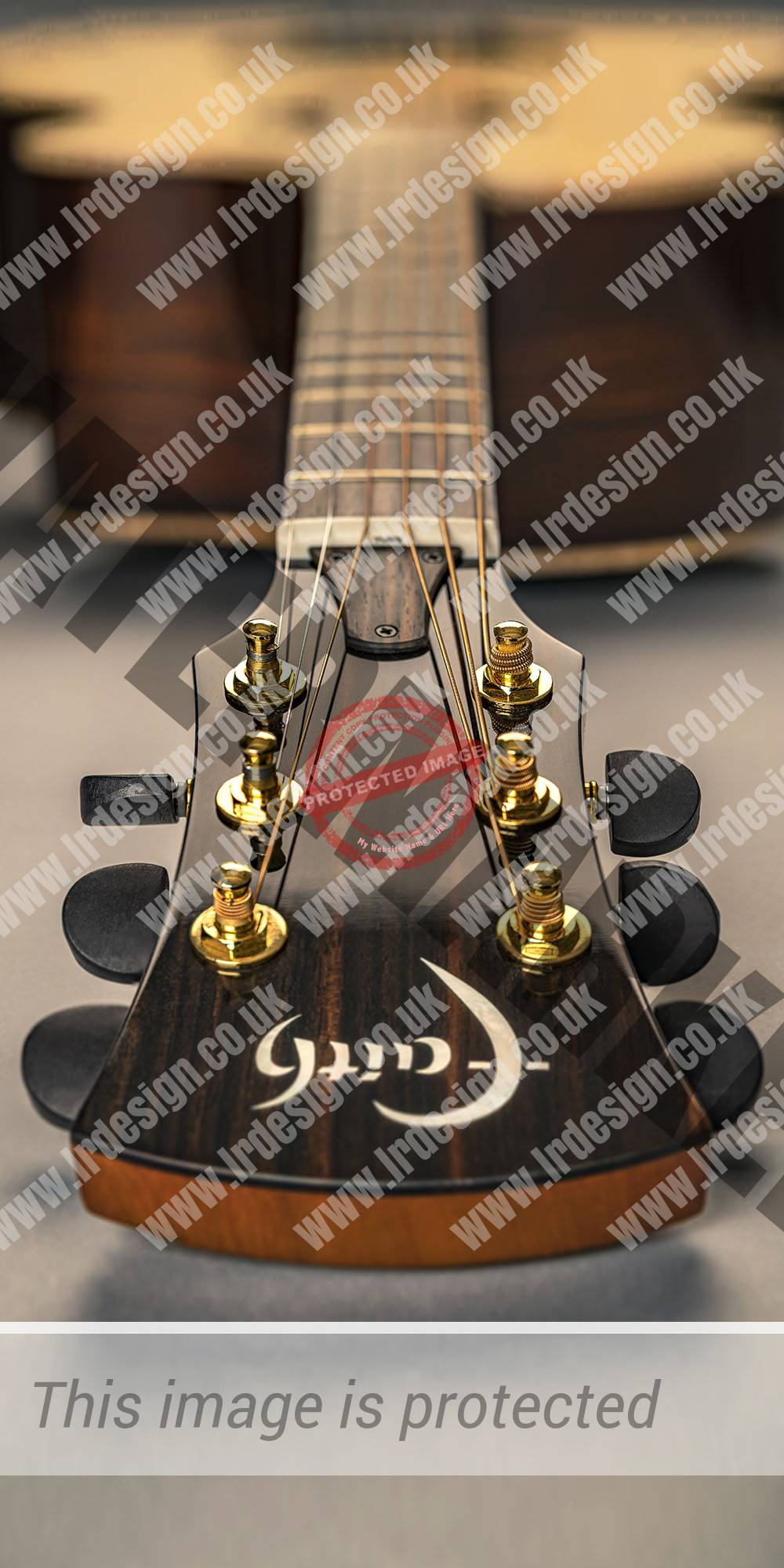 Faith acoustic guitar, close up of the headstock, tuning pegs and logo.